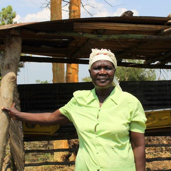 The BeeKeepers: how African women are making history, changing culture and rebooting their lives.